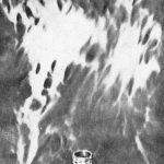 Foto radiônica de anel
